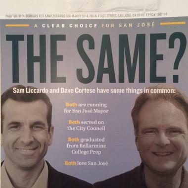 Official Liccardo Campaign Mailer