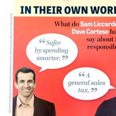 Official Liccardo Campaign Mailer – In Own Words